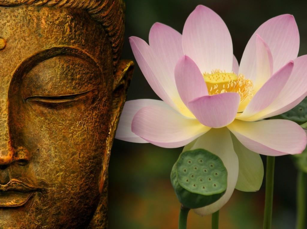 buddha-bg3